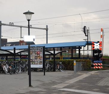 Geen houten fietsenrekken bij Maassluis West