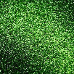 Maassluis Belang: bodemverontreiniging door kunstgras?
