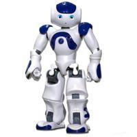 Stedelijk Gymnasium trots op robotbouwers