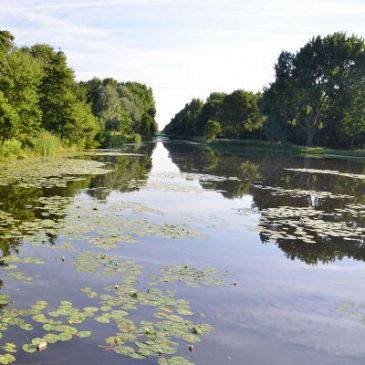 Voetpaden in Beatrixpark krijgen dierennamen