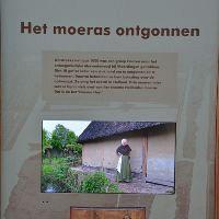 Hoe Holland tot bloei kwam
