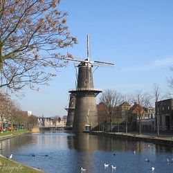 Distillers District geeft Rotterdam-Centrum lucht