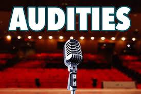 Het Vlaardings Musicalgezelschap houdt audities !