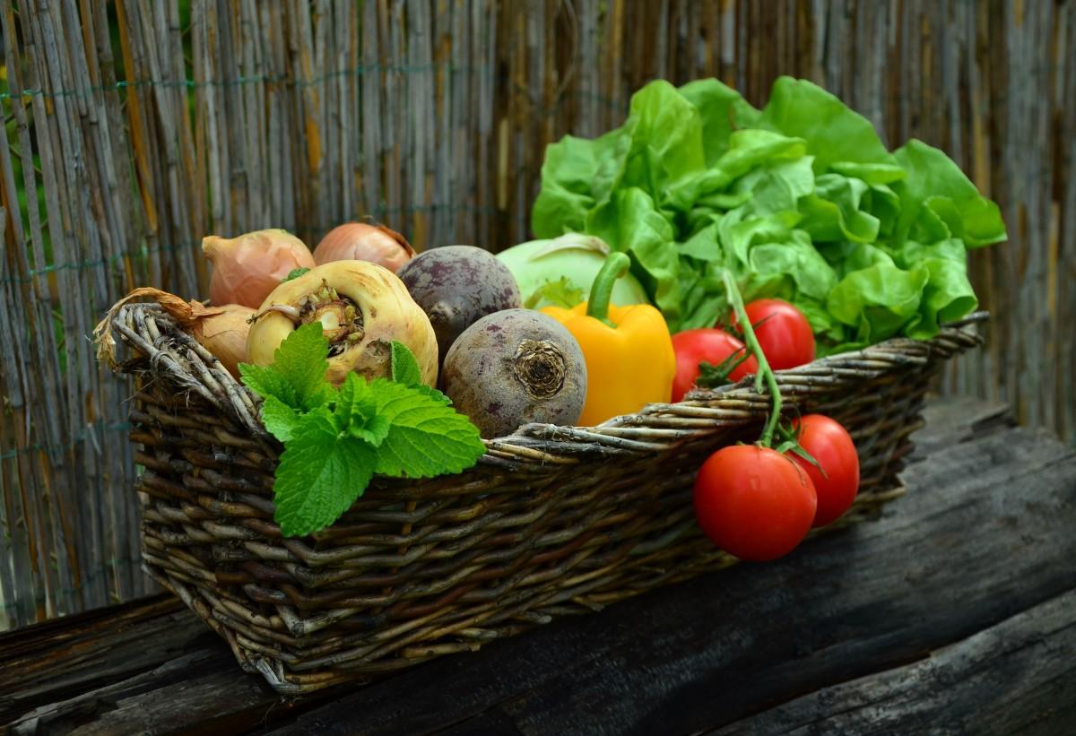 Bloemen en groente voor weinig bij de Stadslandbouw