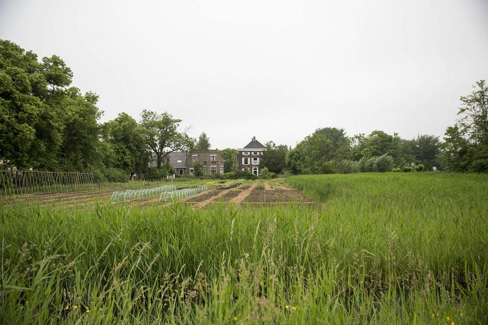 Landgoed Hoogstad te koop