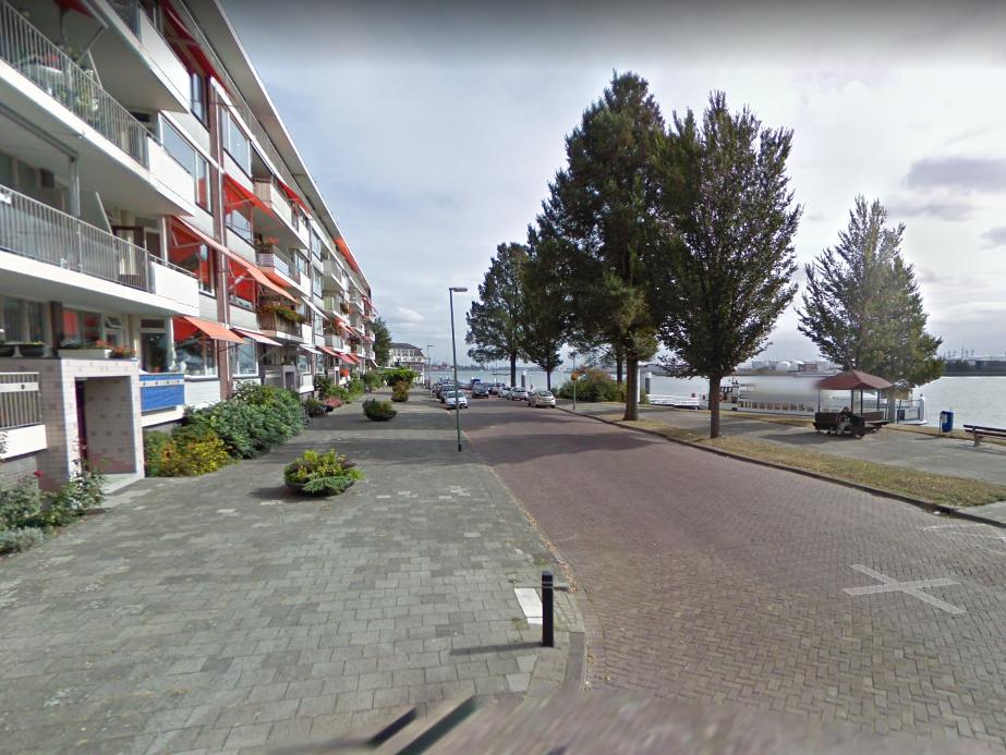 Bomen Maasboulevard blijven