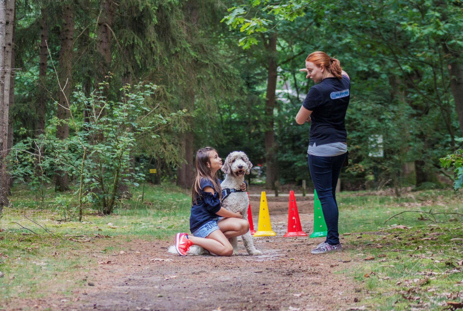Hulphond Nederland zoekt voor regio warm thuis voor hulphonden