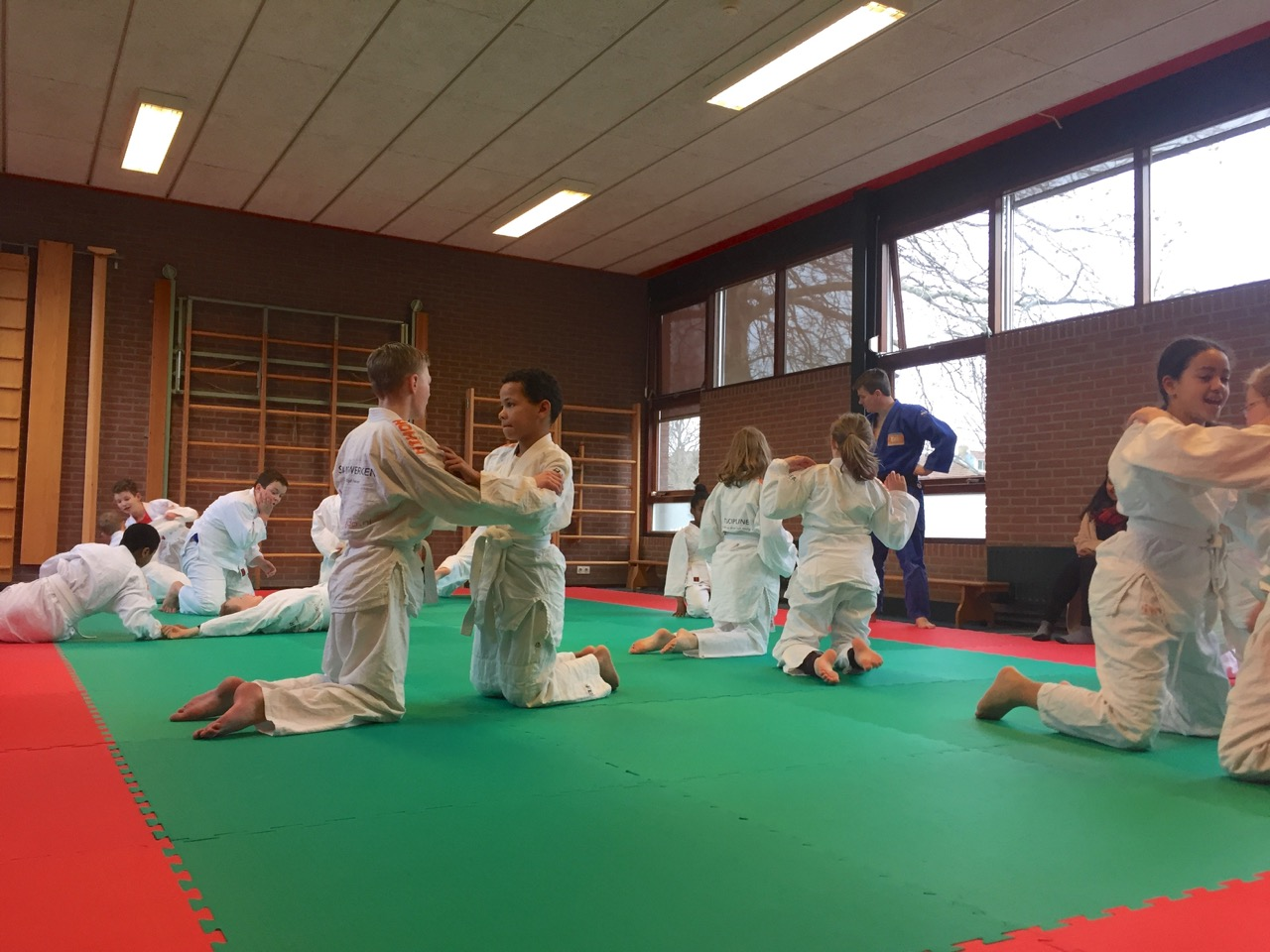 Speellokaal Christal is een dojo