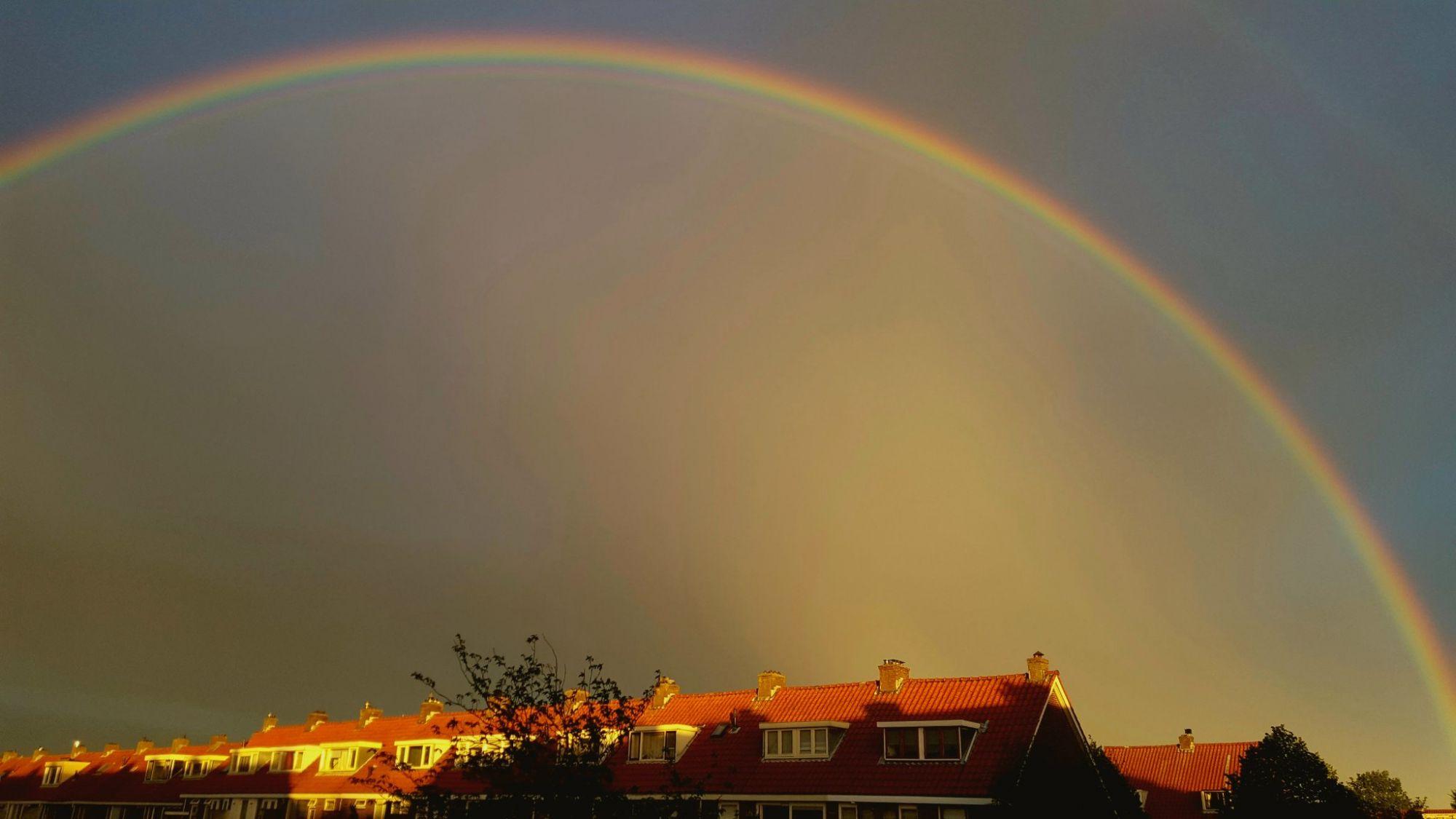 Vlaardingen onder de regenboog