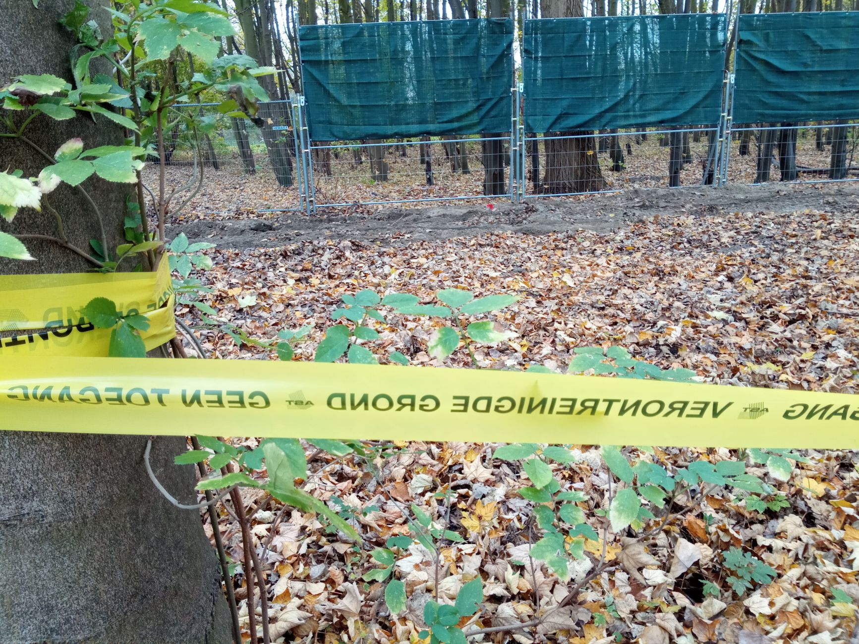 Herinrichting en sanering (asbest) Oeverbos bijna klaar