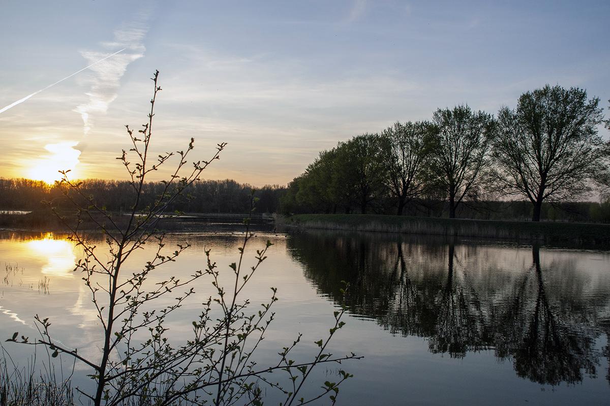 Zomeravondwandeling: lekker struinen door de Broekpolder