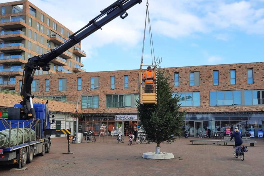 Kerstboom Van Hogendorpkwartier vernield