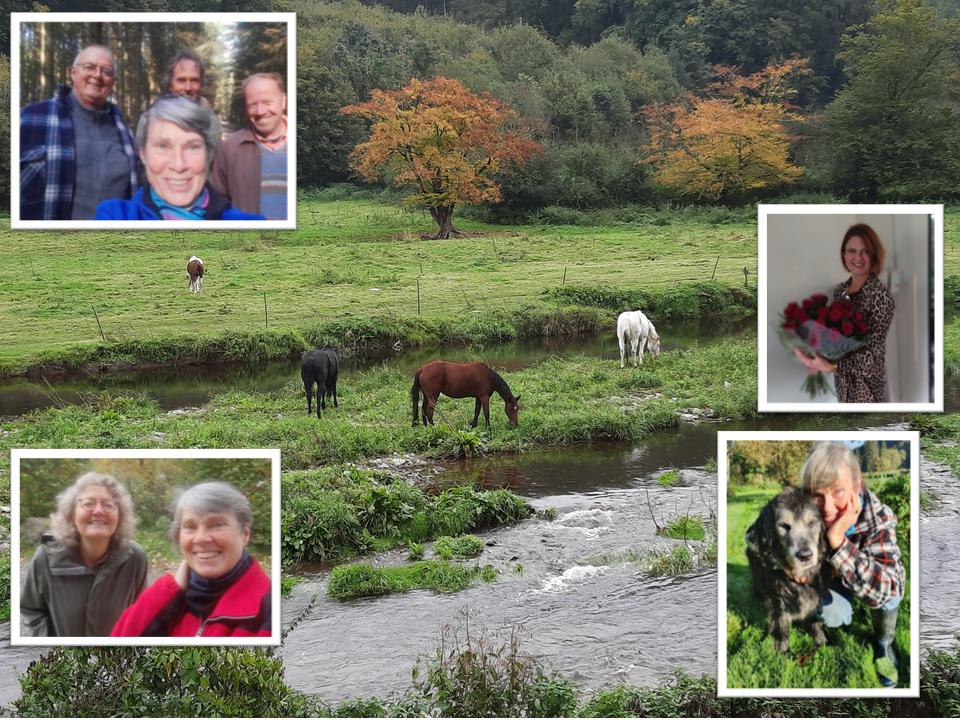 Ondeugende paarden en hartverwarmende vriendschappen