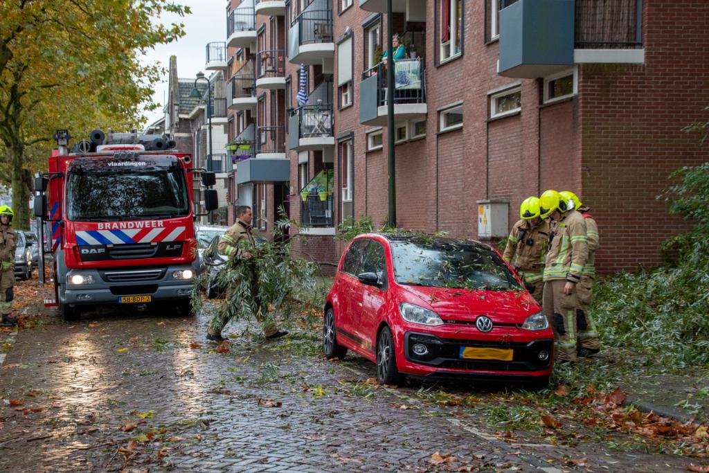 Boom waait op auto Westhavenkade