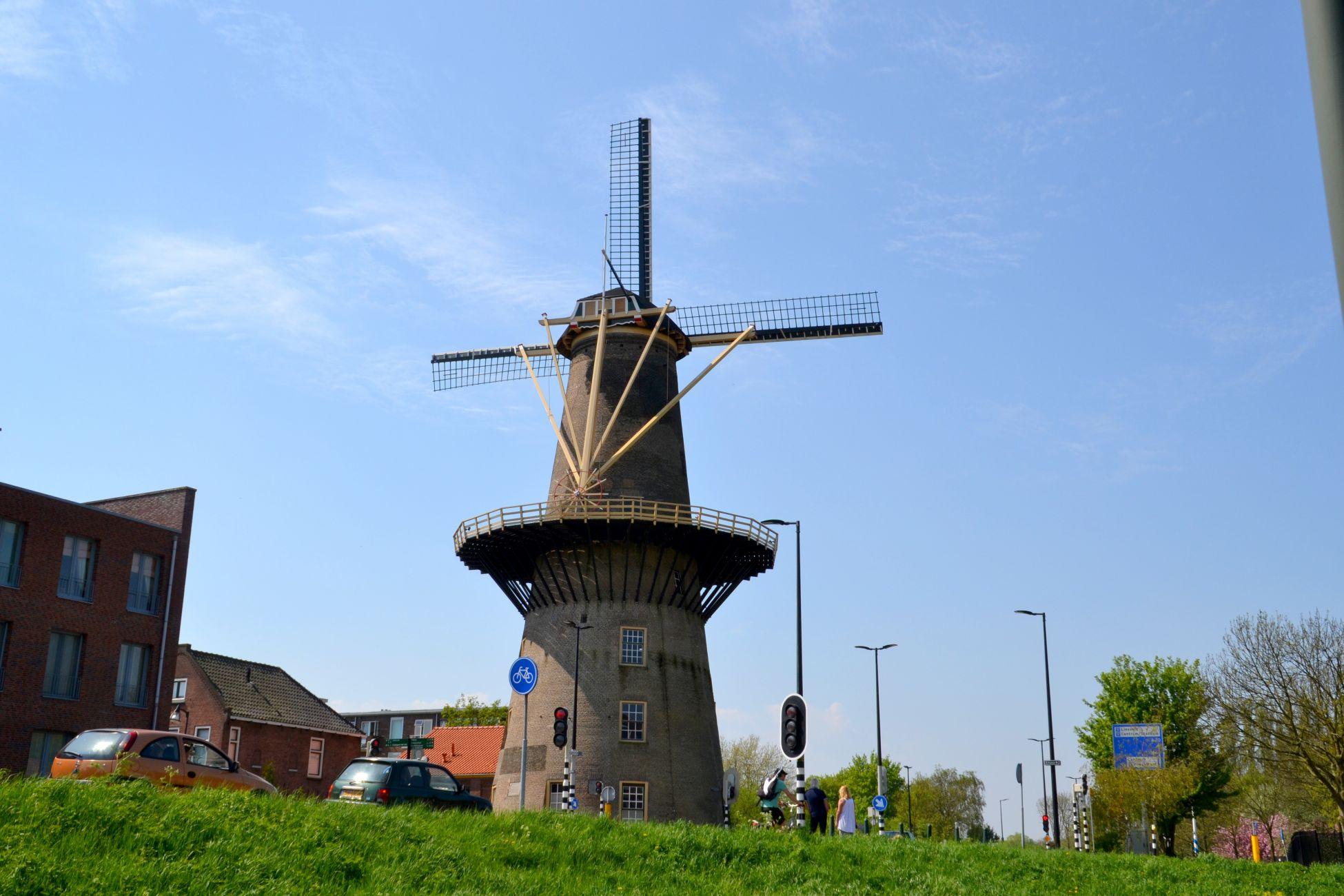 In weer en wind: Vlaardingse molen weer open
