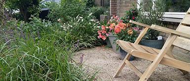 Maassluis houdt subsidie voor klimaatbestendige tuinen
