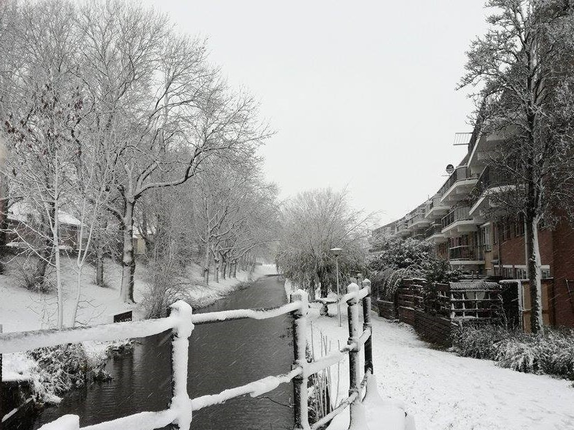 Sneeuw onderweg naar Maassluis