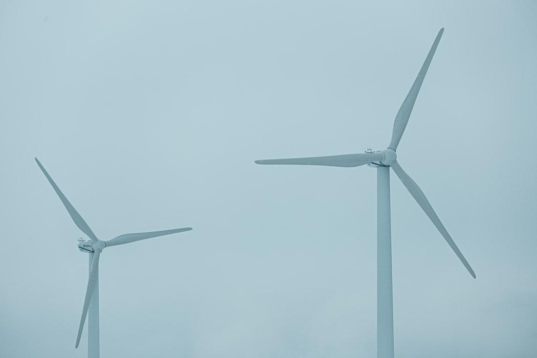 Raad van State geeft groen licht voor windmolens Oeverbos