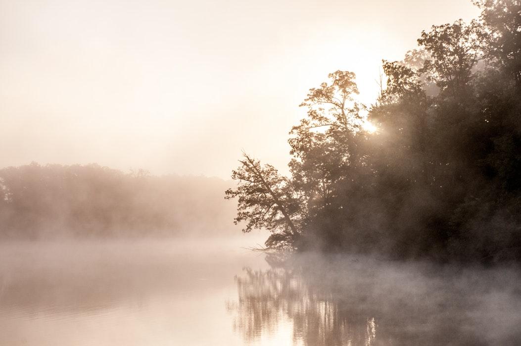 KNMI waarschuwt voor dichte mist
