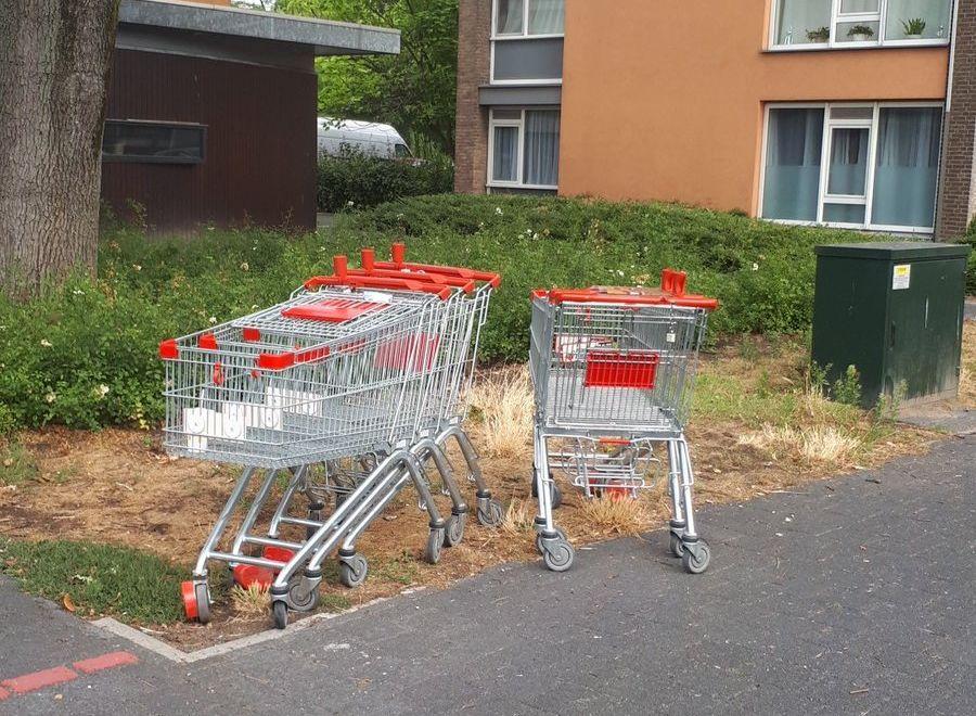Supermarkt op bon voor winkelwagentjes