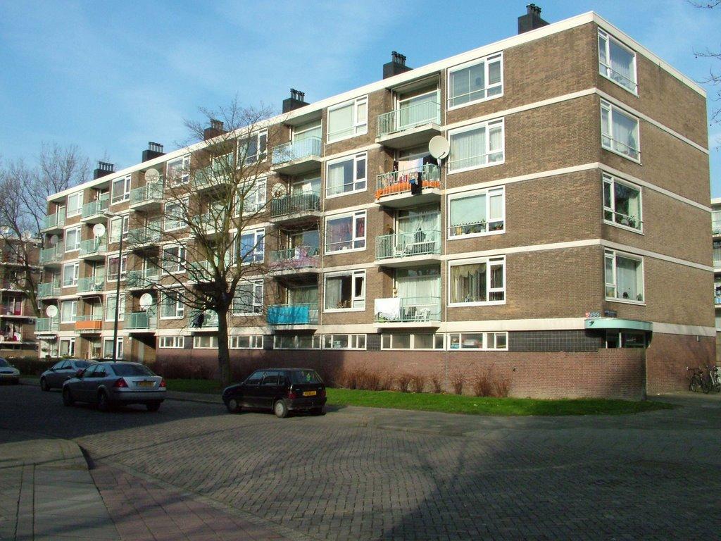 Maatschappelijk Werk Huizen : Renovatie 144 woningen in nieuwland schiedam24