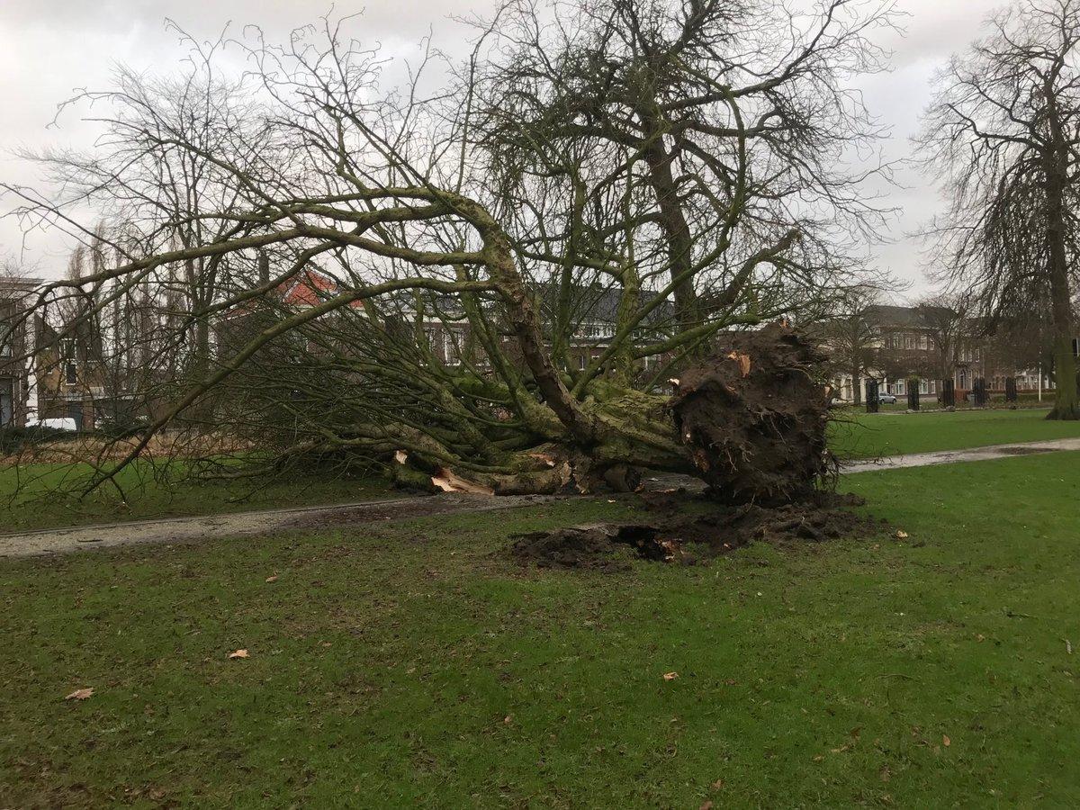 Storm houdt huis in Schiedam