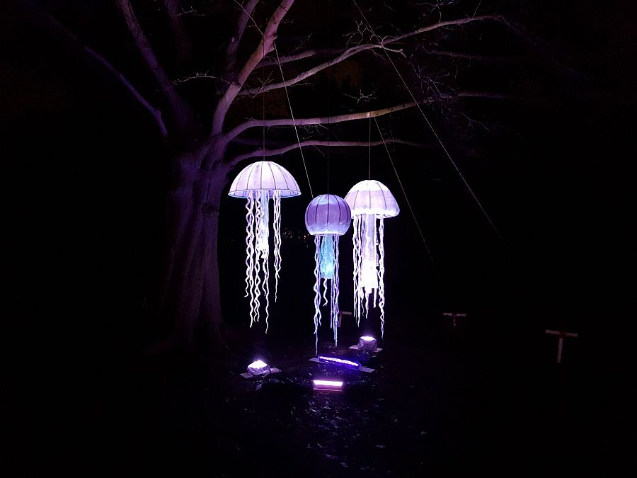 Twintig lichtkunstwerken op Winterlicht