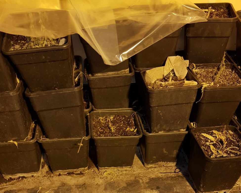 Wietplantage in nieuwe woning