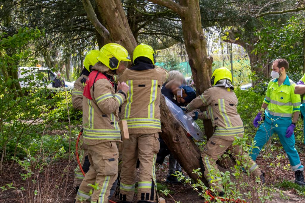 Brandweer bevrijdt kind uit boom