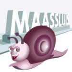 Fotograaf zoekt Maassluizers voor fotokunstwerk