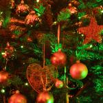 Geld verdienen met de kerstboominzameling