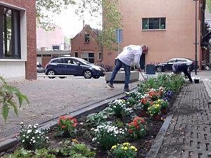 ONS.Vlaardingen zet de bloemetjes buiten