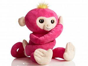 Wie heeft een fingerling aapje gevonden?