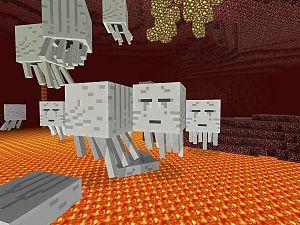 Bieb Minecraft: doe mee en laat je fantasie de vrije loop!