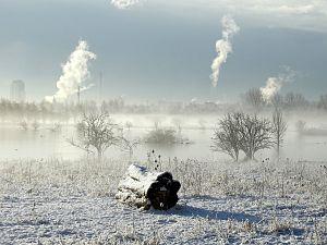 Winterwandeling in de Broekpolder