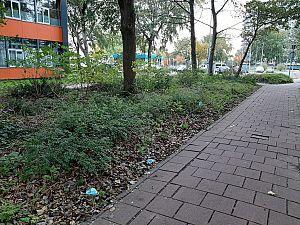 'Plaats extra afvalbakken voor mondkapjes'