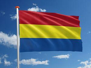 Vlaardingse vlag wappert binnenkort op stadhuis