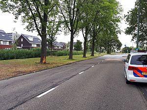 Dieven rijden gestolen auto tegen boom