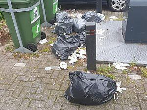 'Afval wordt bijna elke dag zomaar neergegooid'