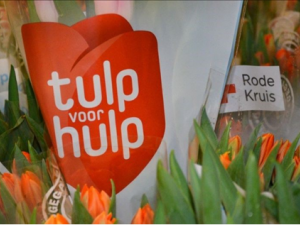 De actie Tulp voor Hulp heeft u nodig!