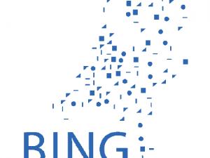 Rechter: Bing moet schade Schiedam betalen