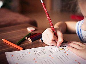 Denk vreest toename speciaal onderwijs
