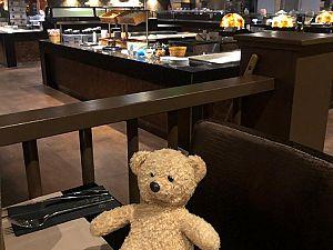 'Teddy' maakt het gezellig, maar mist thuis