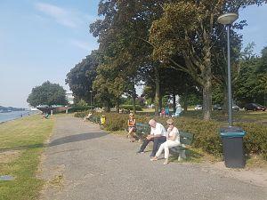 Ms Rotterdam in Schiedam