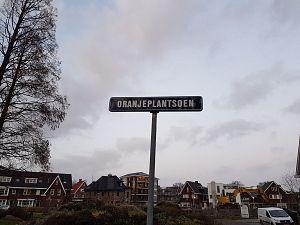 Bewoners: 'Nieuwe bomen Oranjeburgh nog dit seizoen'