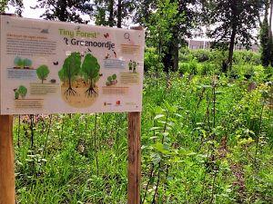 Gemeente zoek initiatiefnemers voor twee mini-bossen
