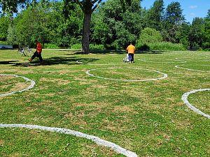 Beatrixpark en Maasboulevard krijgen ook hun cirkels in het gras