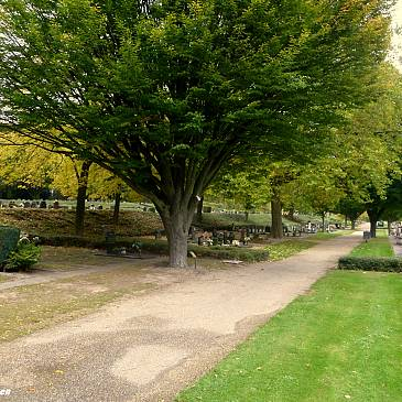 Aangiften vernielingen begraafplaats