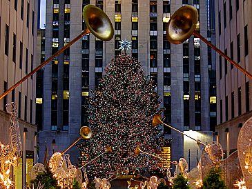 Groenmarkt krijgt zijn grote kerstboom weer terug