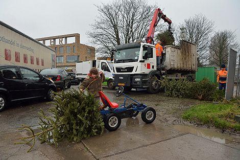Goed bezig! 3718 kerstbomen ingeleverd